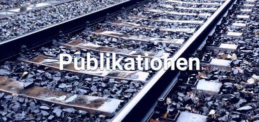 Übersicht der Publikationen zum gestörten Bauablauf