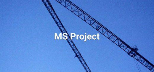 Anspruchsgrundlage sichern mit MS Project